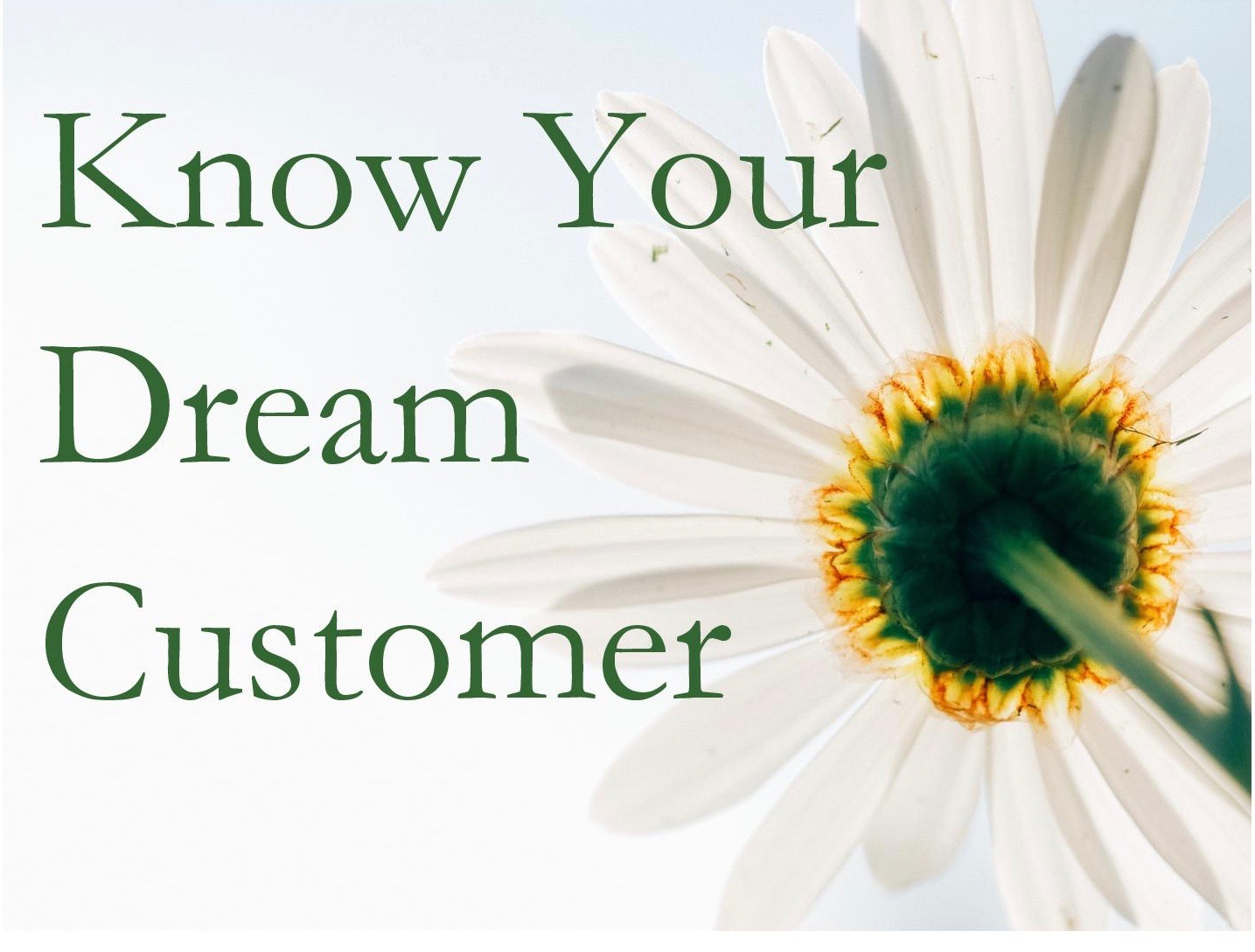 Know Your Dream Customer